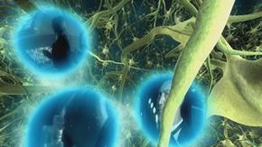 Cuántica : eventos e interrelaciones con otras ciencias Neuronas