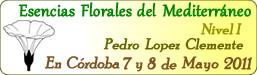Esencias Florales del Mediterráneo®: Las Esencias Áureas - Córdoba, Argentina