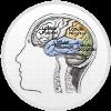 memoria celular icono