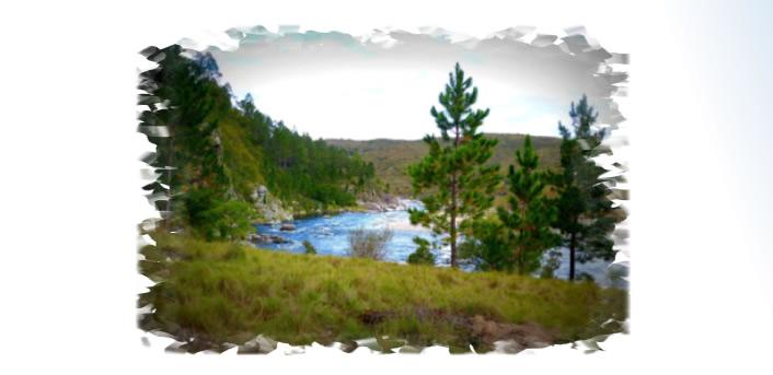 Umepay Río