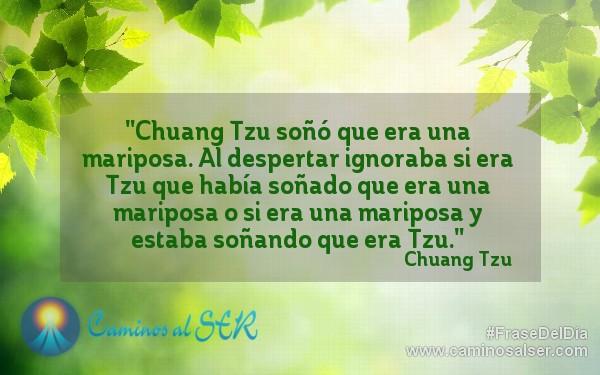 """""""Chuang Tzu soñó que era una mariposa. Al despertar ignoraba si era Tzu que había soñado que era una mariposa o si era una mariposa y estaba soñando que era Tzu."""" Chuang Tzu"""