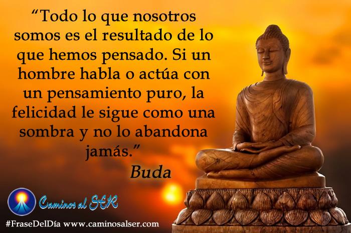 Todo lo que nosotros somos es el resultado de lo que hemos pensado. Si un hombre habla o actúa con un pensamiento puro, la felicidad le sigue como una sombra y no lo abandona jamás. Buda