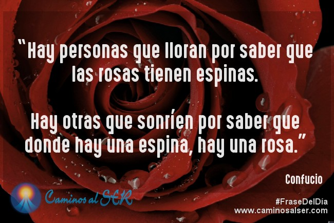 """""""Hay personas que lloran por saber que las rosas tienen espinas. Hay otras que sonríen por saber que donde hay una espina, hay una rosa."""" Confucio"""