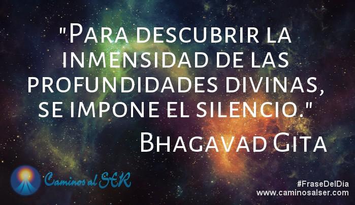 Para descubrir la inmensidad de las profundidades divinas, se impone el silencio. Bhagavad Gita