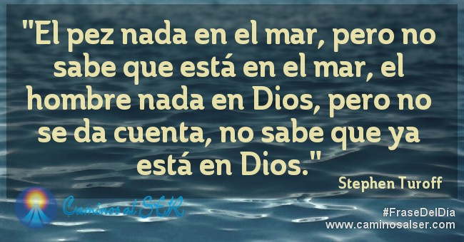El pez nada en el mar, pero no sabe que está en el mar, el hombre nada en Dios, pero no se da cuenta, no sabe que ya está en Dios. Stephen Turoff