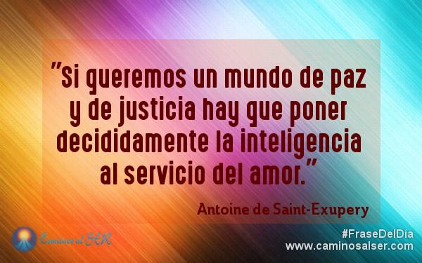 Si queremos un mundo de paz y de justicia hay que poner decididamente la inteligencia al servicio del amor. Antoine de Saint-Exupery
