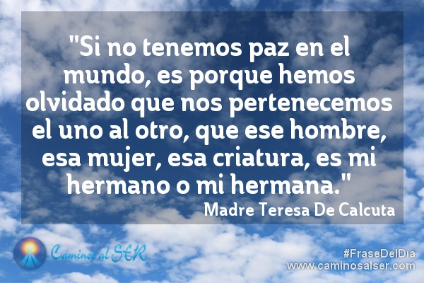 Si no tenemos paz en el mundo, es porque hemos olvidado que nos pertenecemos el uno al otro, que ese hombre, esa mujer, esa criatura, es mi hermano o mi hermana. Madre Teresa De Calcuta