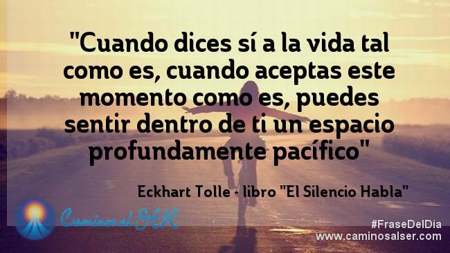 """""""Cuando dices sí a la vida tal como es, cuando aceptas este momento como es, puedes sentir dentro de ti un espacio profundamente pacífico."""" Eckhart Tolle - libro """"El Silencio Habla"""""""