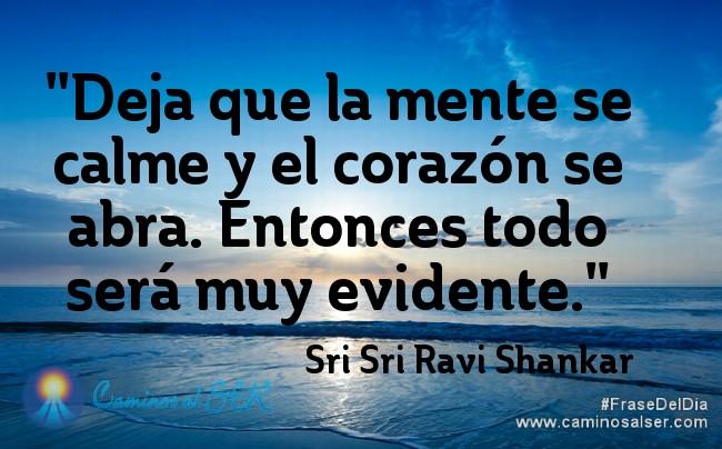 'Deja que la mente se calme y el corazón se abra. Entonces todo será muy evidente.' Sri Sri Ravi Shankar