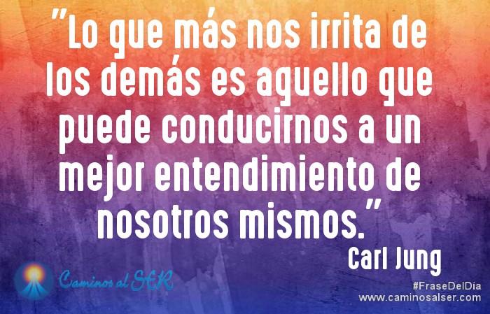 Lo que más nos irrita de los demás es aquello que puede conducirnos a un mejor entendimiento de nosotros mismos. Carl Jung