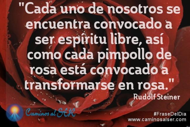 Cada uno de nosotros se encuentra convocado a ser espíritu libre, así como cada pimpollo de rosa está convocado a transformarse en rosa. Rudolf Steiner