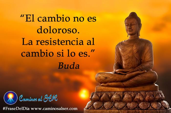 El cambio no es doloroso. La resistencia al cambio si lo es. Buda