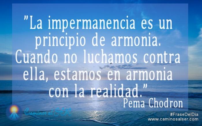 La impermanencia es un principio de armonía. Cuando no luchamos contra ella, estamos en armonía con la realidad. Pema Chodron