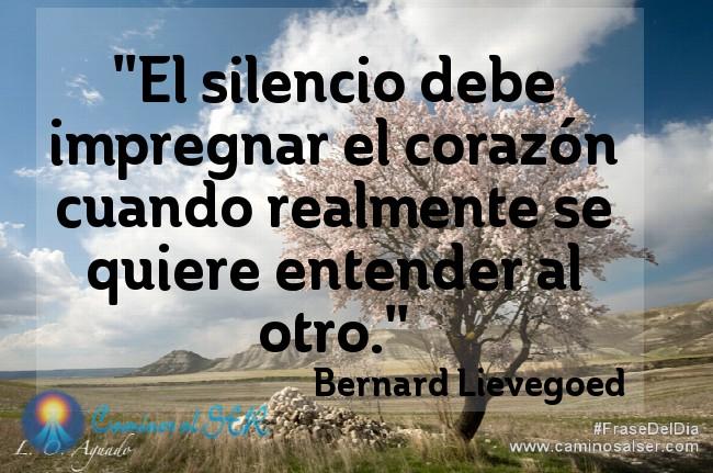 El silencio debe impregnar el corazón cuando realmente se quiere entender al otro. Bernard Lievegoed
