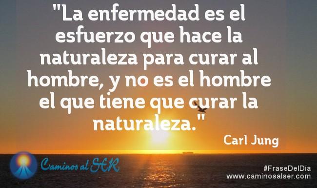 La enfermedad es el esfuerzo que hace la naturaleza para curar al hombre, y no es el hombre el que tiene que curar la naturaleza. Carl Jung