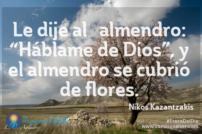 """Le dije al almendro: """"Háblame de Dios"""", y el almendro se cubrió de flores. Niko Kazantzakis"""