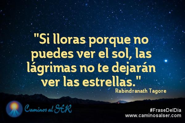 """""""Si lloras porque no puedes ver el sol, las lágrimas no te dejarán ver las estrellas."""" Rabindranath Tagore"""