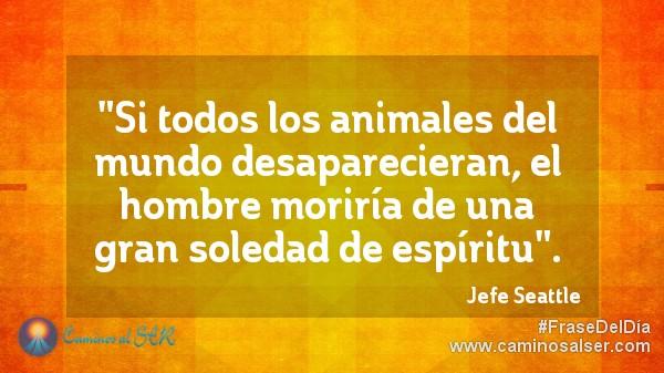 """""""Si todos los animales del mundo desaparecieran, el hombre moriría de una gran soledad de espíritu"""". Jefe Seattle"""