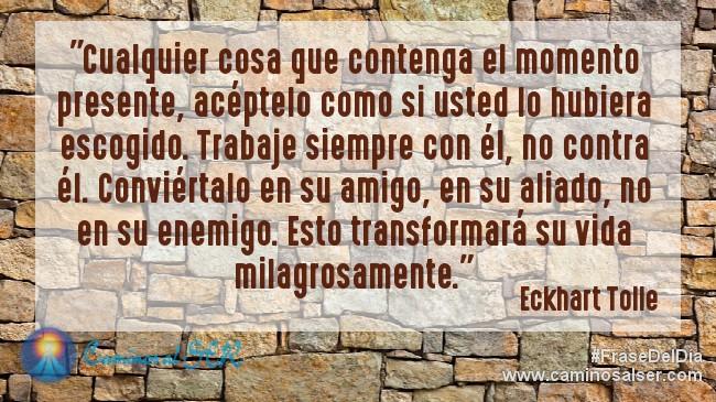 """""""Cualquier cosa que contenga el momento presente, acéptelo como si usted lo hubiera escogido. Trabaje siempre con él, no contra él. Conviértalo en su amigo, en su aliado, no en su enemigo. Esto transformará su vida milagrosamente."""" Eckhart Tolle - libro """"El Poder del Ahora"""""""